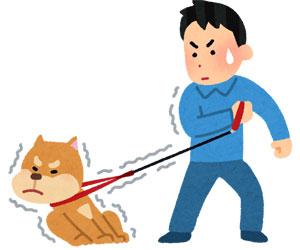 犬 リード