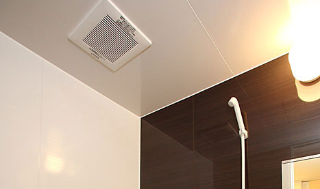 風呂掃除 天井