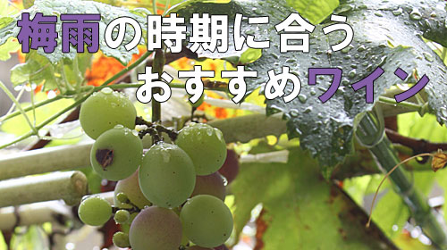 ワイン 梅雨